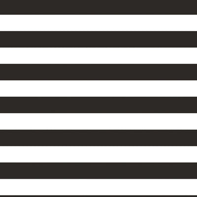 Black And White Stripe Photo Booth Backdrop by Creative Converting