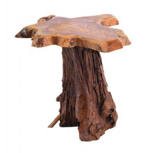 Load image into Gallery viewer, Root Lamp Table Tree Root Top Lamp Table Natural Tree root Side End Table - VEHome
