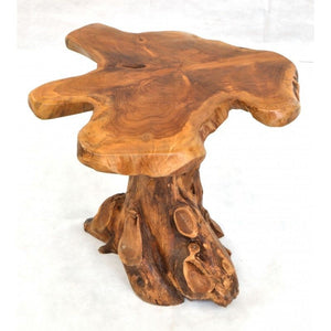 Root Lamp Table Tree Root Top Lamp Table Natural Tree root Side End Table - VEHome