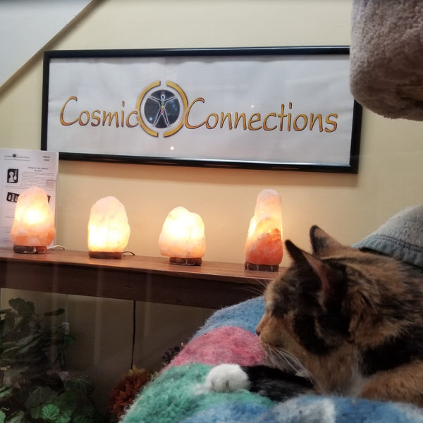 Sunny from Cosmic Connections