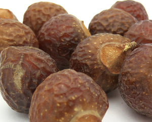 Soap Nuts, Berries - Wild Harvested, Natural soap