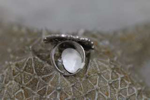 Rings- Costume Jewellery (10)