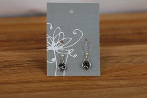 Earrings with Hook (161)