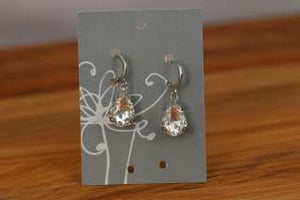 Earrings with Hooks  (104)