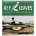 Key Leaves - Saxophone Key Props (for Soprano Saxophones)-Accessories-Key Leaves-Music Elements