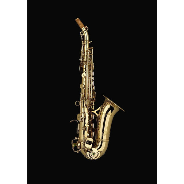 Schagerl - Academica Series - SC-600 Curved Soprano Saxophones-Saxophone-Schagerl-Music Elements