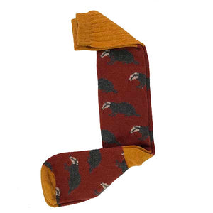 Terracotta badger long socks