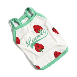 Strawberry Dog clothes