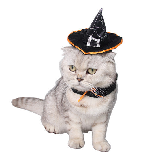 Witch Hat for Cat And Dogs