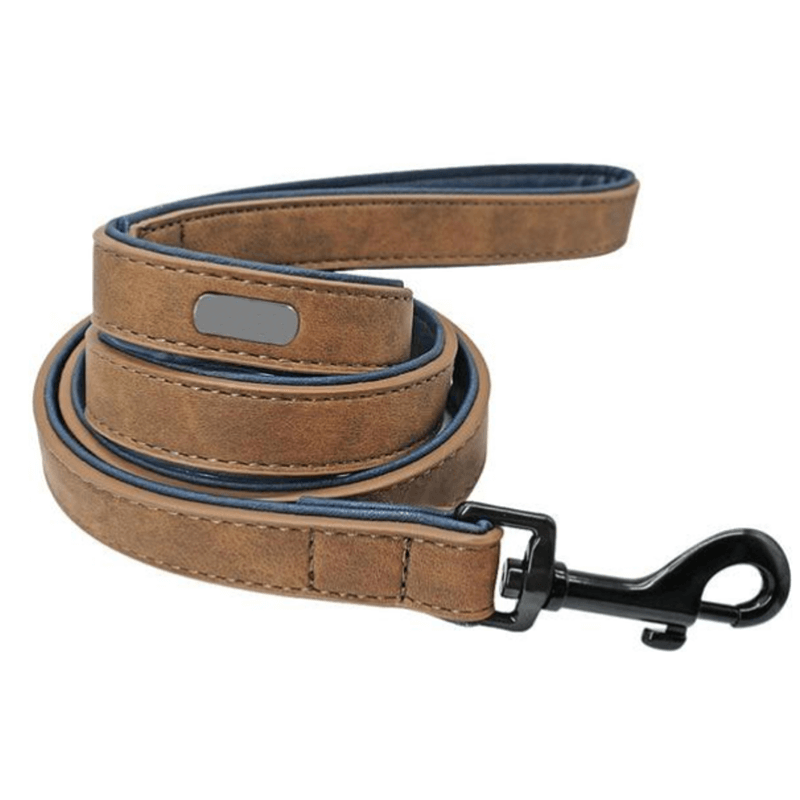 Lustrous Leather Dog Leash Genuine Leather-23.97-DOG, GENUINE, LEAD, LEASH, LEATHER, WALK