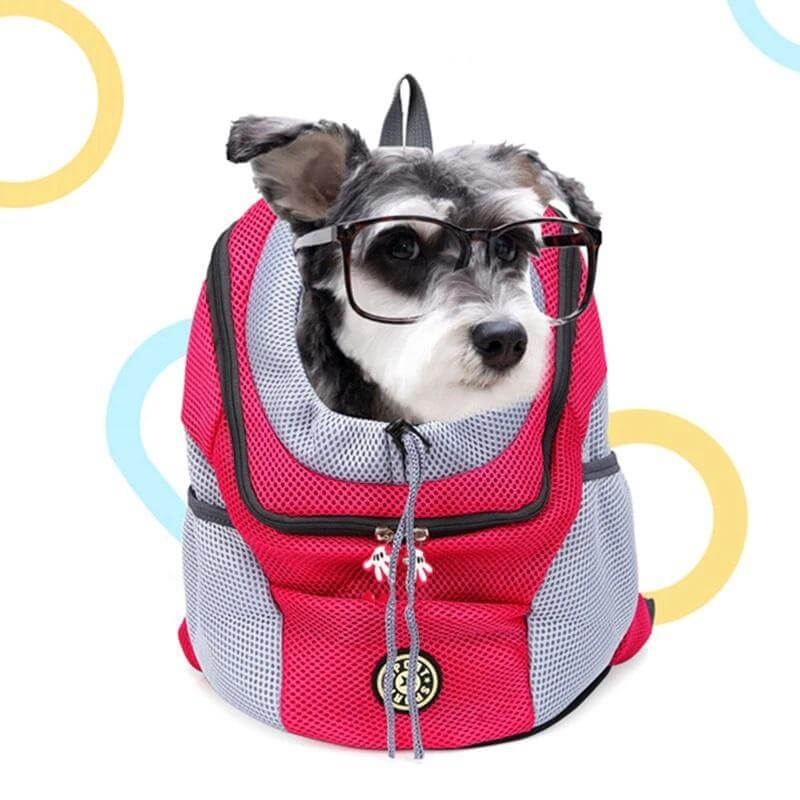 Dog Double Shoulder Portable Travel Backpack