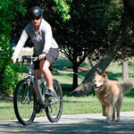 Dog Bicycle Leash Hands Free Lead Keeper