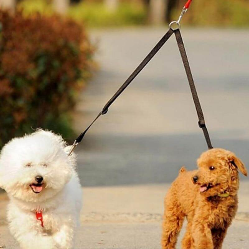Twin Dual Coupler Two Way Walking Lead Leash