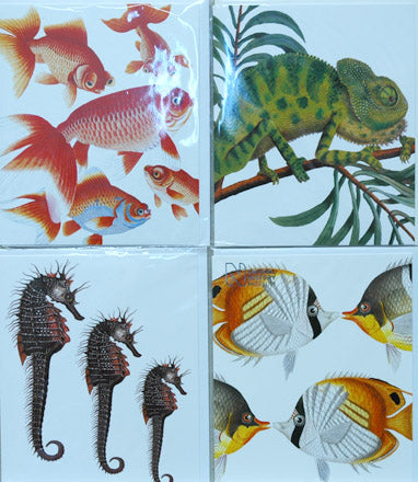 Single Card Assortment NHM Goldfish Chameleon, Seahorse, Butterflyfish