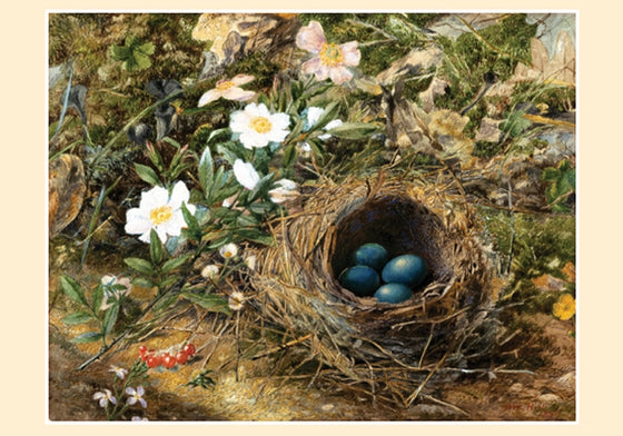 Small Boxed Cards Hill Bird's Nest and Dog Roses