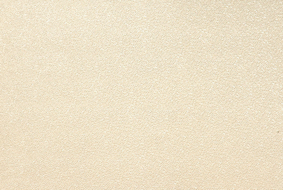 Embossed Pebbles Champagne