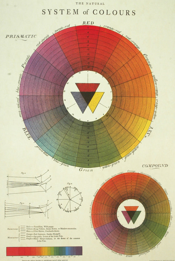 Florentine Print Color Wheel