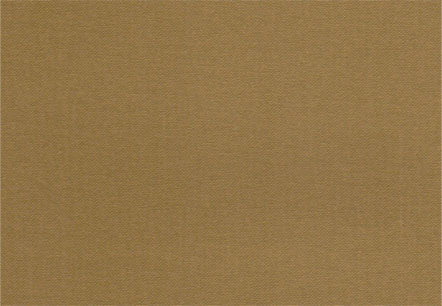 Luminescent Bookcloth Chestnut