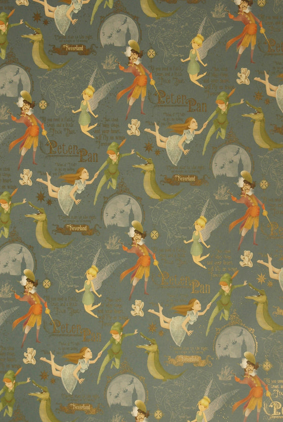 Florentine Print Peter Pan in Neverland
