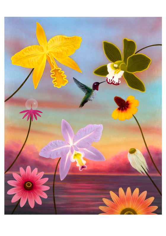 Boxed Cards L. C. Armstrong Hummingbirds
