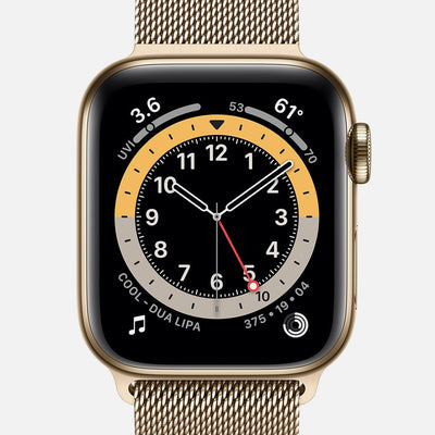 Apple Watch Series 6 GPS + Cellular Gold Stainless Steel Case 40mm With Gold Milanese Loop