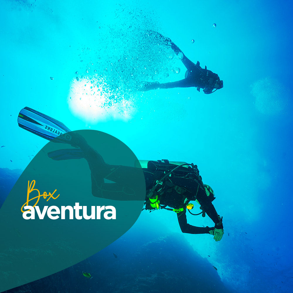 Buceo Coquimbo