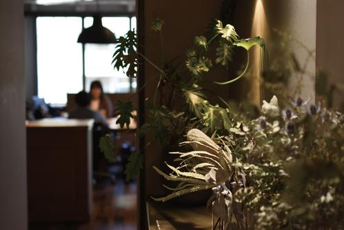 TOKYO OFFICE INTERIOR WITH ASSORTMENT OF PLANTS  IMAGE 3