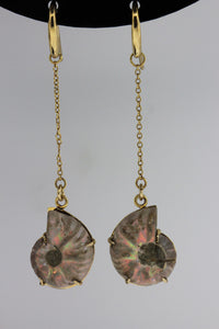 9ct Ammonite Earrings
