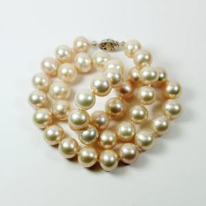 Beige Freshwater AAA Pearl Necklace