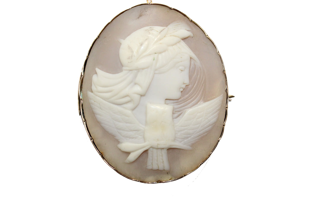 Victorian Conch Shell Cameo