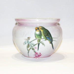 Bavarian Budgerigar Porcelain Bowl
