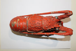 Solid Iron Lobster