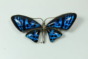 Sterling Silver Butterfly Wing  and Rock Crystal Brooch