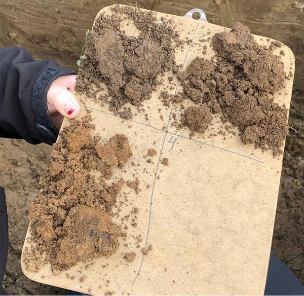 Land Judging Activity for Topsoil Evaluation