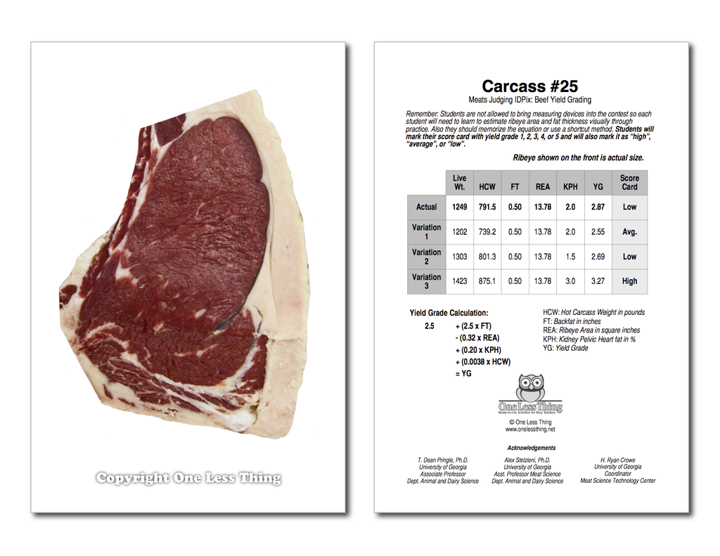 Beef Yield Grading, IDPix Cards