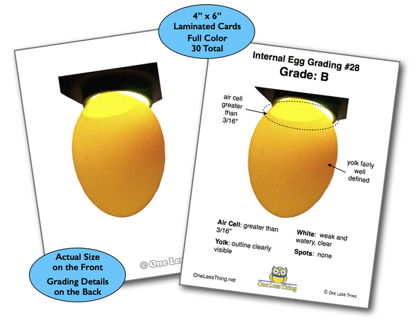 Interior Egg Grading, Poultry CDE Cards