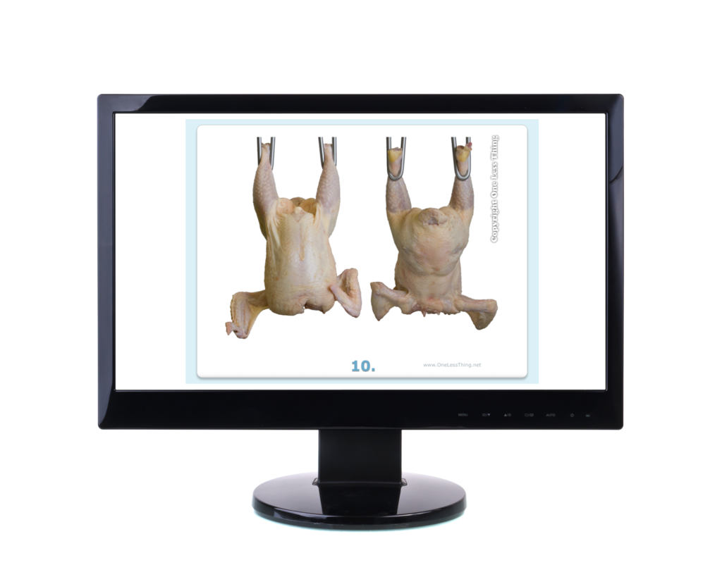 Poultry Judging Carcass Grading Practice, PowerPoint Downloads