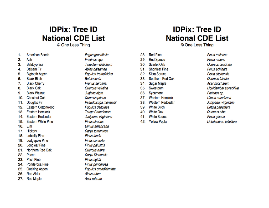 Forestry National FFA Tree ID, IDPix Cards