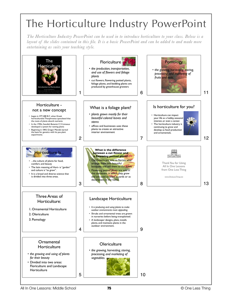 6-07 The Horticulture Industry, Lesson Plan Download