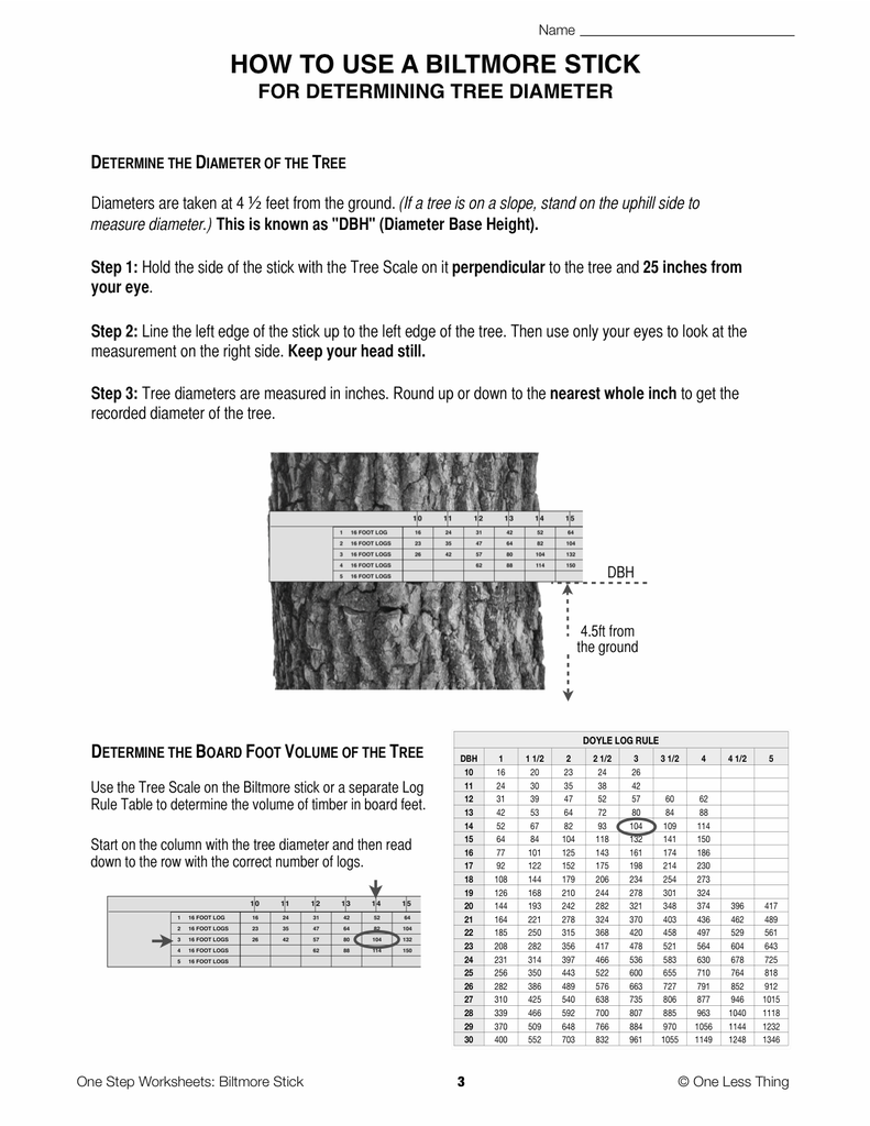 Biltmore Stick One Step Worksheet Downloads One Less Thing