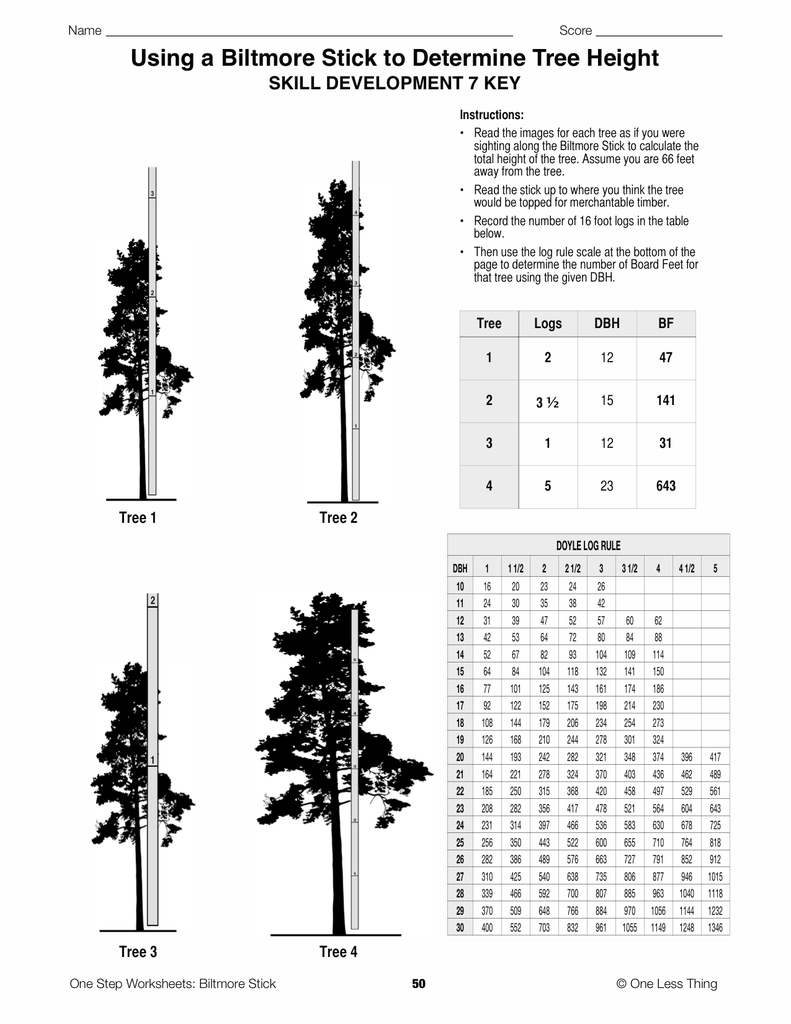Biltmore Stick, One Step Worksheets - One Less Thing