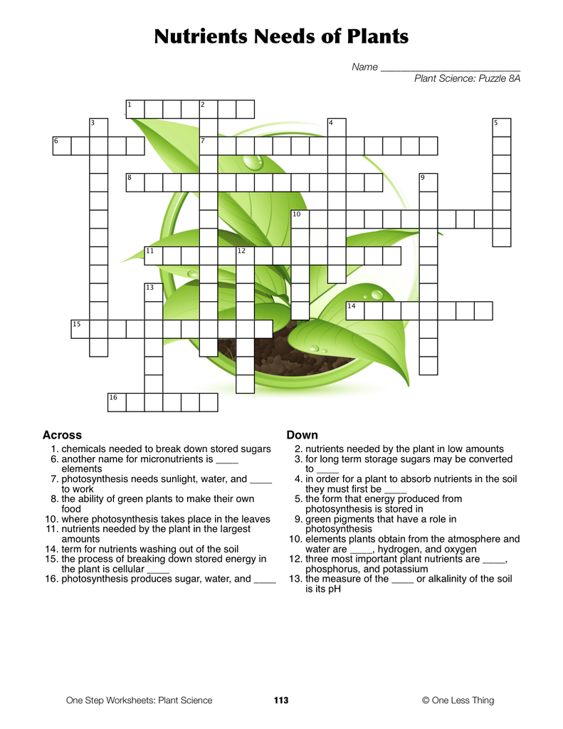 Plant Science One Step Worksheets One Less Thing – Plant Needs Worksheet