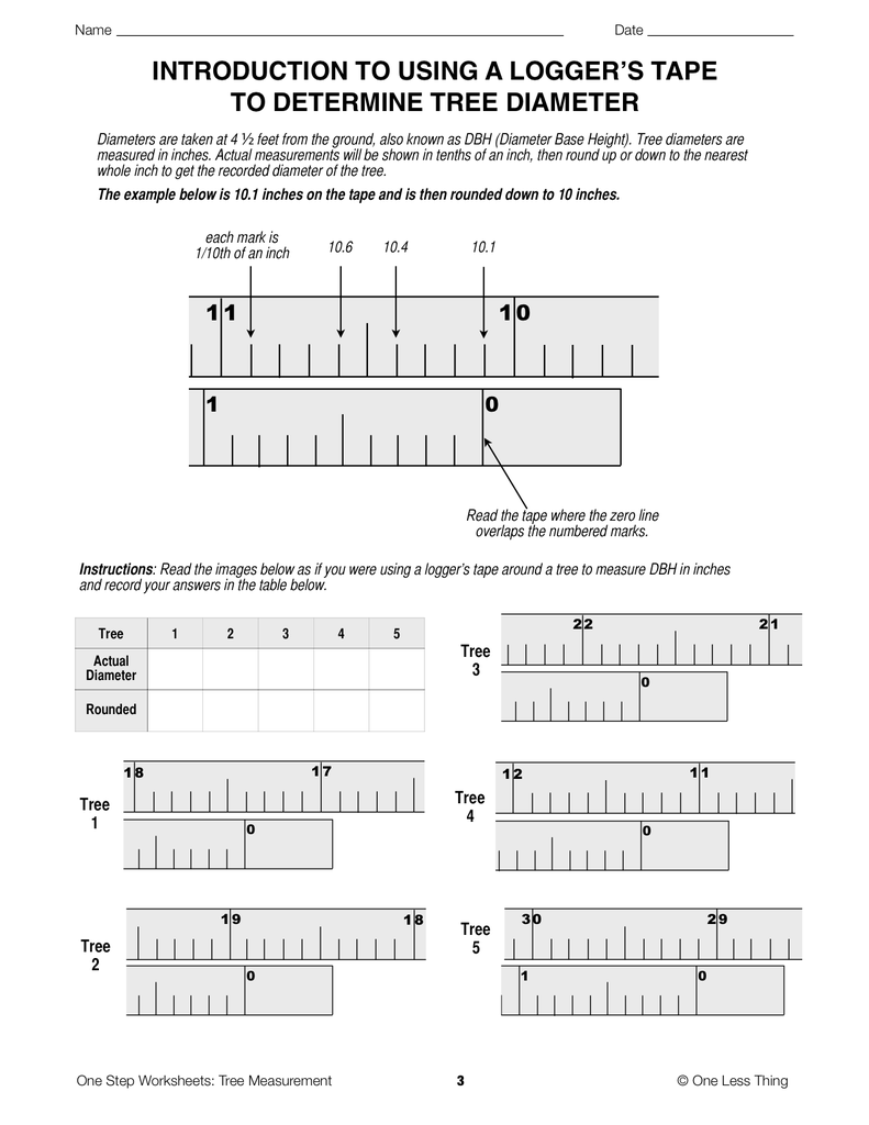 Tree Measurement One Step Worksheets One Less Thing – Step 10 Worksheet