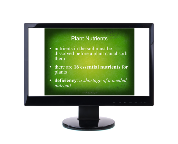 Plant Science, PowerPoints