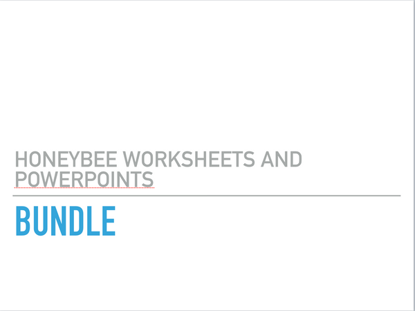 Honeybee Worksheet and PowerPoint Bundle, Downloads