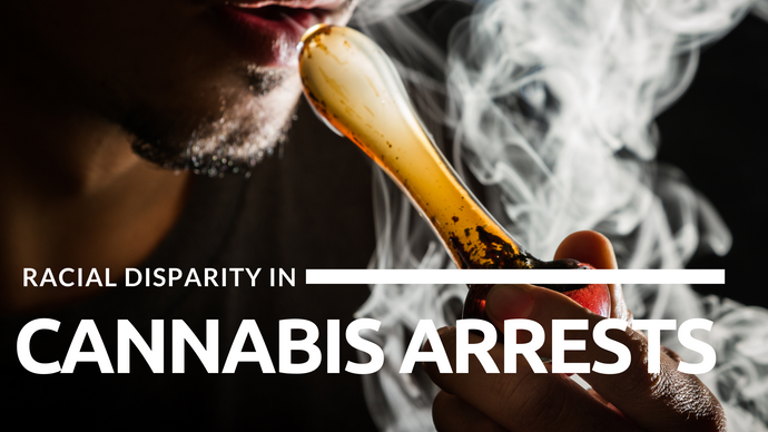 Racial Disparity In Cannabis Arrests