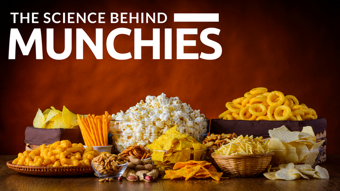 The Science Behind Your Munchies