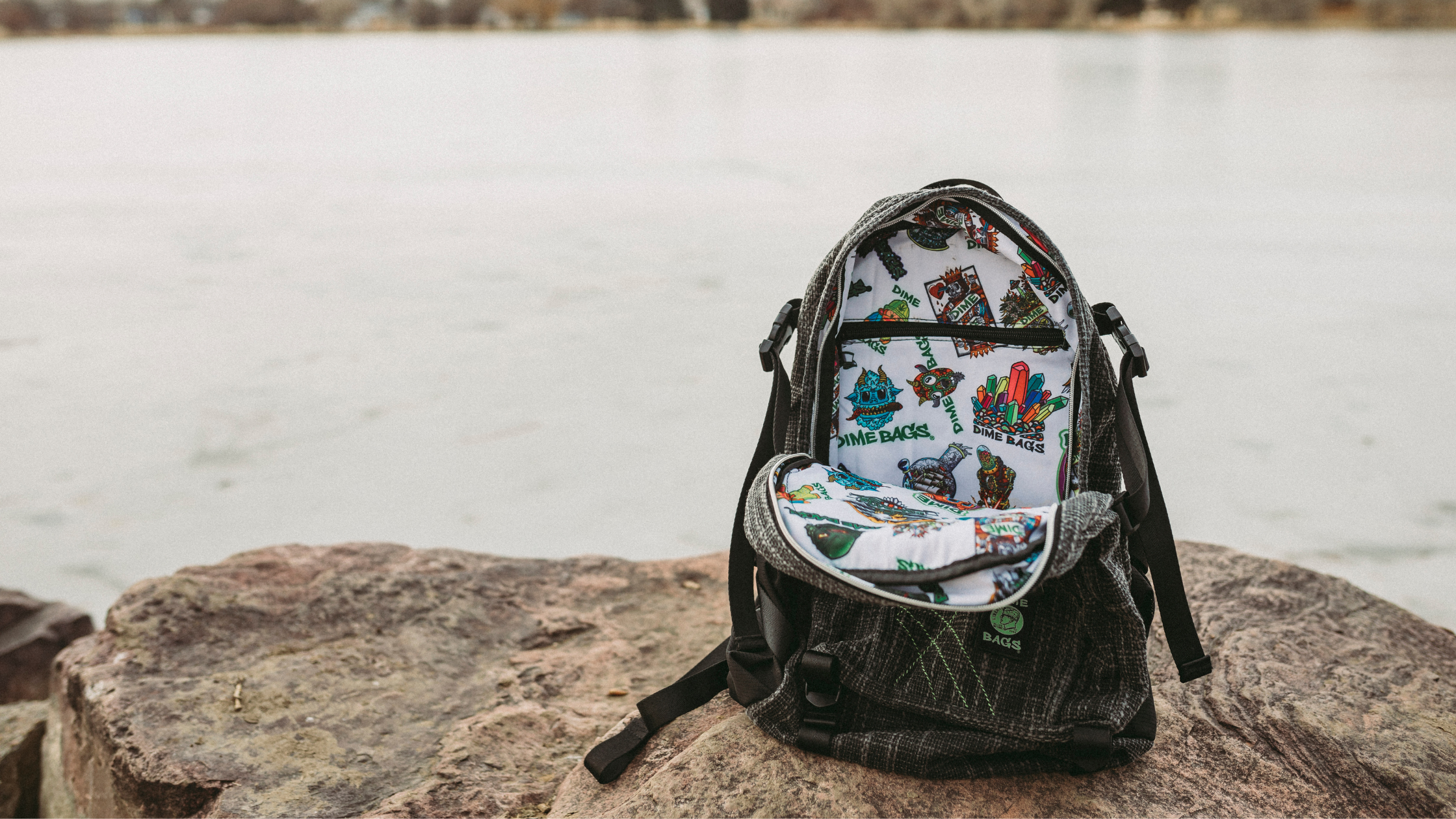 Sticker of the Month Interior Classic Backpack Dime Bags