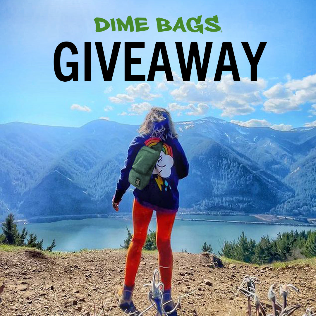 Get Lucky with Dime Bags Giveaway