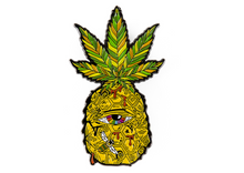 Load image into Gallery viewer, Ellie Paisley EYEnapple Pin | Exclusive Pin | Collab Pin